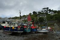 boats at catgwith